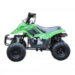 GMX 110cc Sports Quad Bike - Green